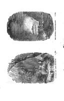 Pàgina 310