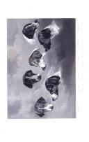 Pàgina 370
