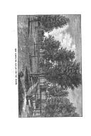 Pàgina 567