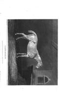Pàgina 280