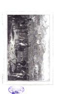 Pàgina 528