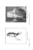 Pàgina 632
