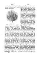 Pàgina 770