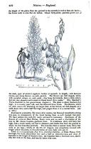 Pàgina 452