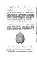 Pàgina 446