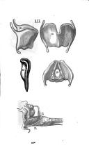 Pàgina 209