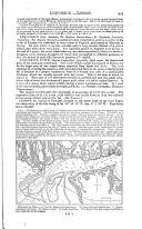 Pàgina 821