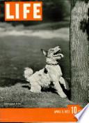 5 Abr. 1937