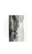 Pàgina 516
