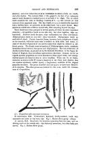 Pàgina 389