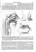 Pàgina 225