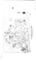 Pàgina 183